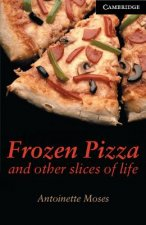Frozen Pizza and Other Slices of Life Level 6