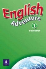 English Adventure Level 1 Flashcards