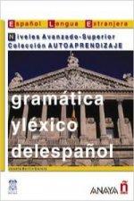 Gramática y léxico del espanol. Niveles Avanzado-Superior