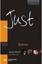 JUST GRAMMAR BRE INT STUDENT BOOK