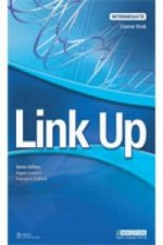 Link Up Intermediate: Test Book
