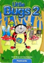 Little Bugs 2 Flashcards International