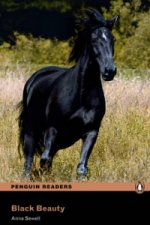 Black Beauty Book & MP3 Pack