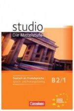 Studio d B2/1 Pracovní sešit