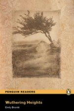 Level 5: Wuthering Heights Book and MP3 for Pack