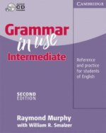 Grammar in Use Intermediate Without answers