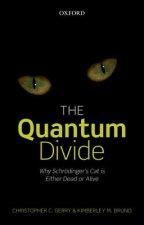 Quantum Divide