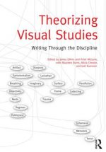 Theorizing Visual Studies