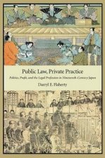 Public Law, Private Practice