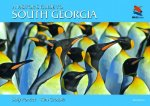 Visitor's Guide to South Georgia