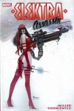 Elektra: Assassin