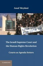 Israeli Supreme Court and the Human Rights Revolution