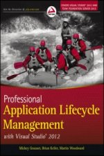 Professional Application Lifecycle Management with Visual St