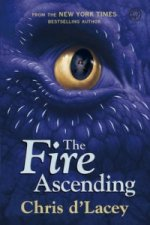Last Dragon Chronicles: The Fire Ascending
