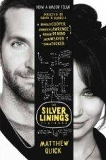 Silver Linings Playbook (film tie-in)