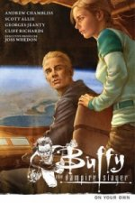 Buffy the Vampire Slayer Season 9