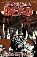 Walking Dead Volume 17: Something to Fear