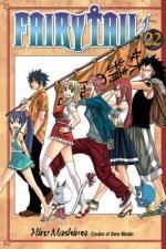 Fairy Tail 22