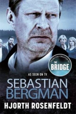 Sebastian Bergman Reihe