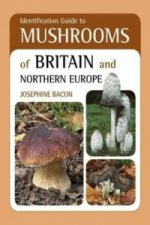 Identification Guide to Mushrooms of Britain and Northern Eu