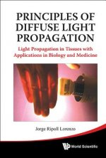 Principles of Diffuse Light Propagation