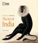Art Of India Images Of Nature