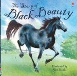 Story of Black Beauty