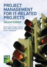 Project Management for IT-related Projects