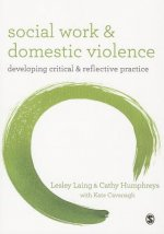 Social Work and Domestic Violence