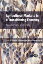 Agricultural Markets in a Transitioning Economy