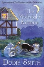 Midnight Kittens