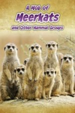 Mob of Meerkats