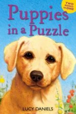 Puppies in a Puzzle (Dalmatian in the Dales & Labrador on th