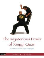 Mysterious Power of Xing Yi Quan
