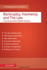 Bankruptcy, Insolvency and the Law