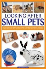 Looking After Small Pets
