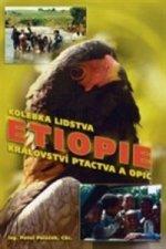 Etiopie Kolébka lidstva, království ptactva a opic