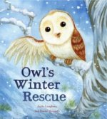 Winter With Owl