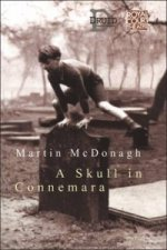 Skull in Connemara
