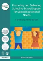 Promoting and Delivering School-to-School Support for Specia