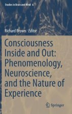Consciousness Inside and Out: Phenomenology, Neuroscience, a