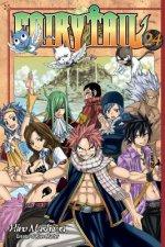Fairy Tail 24