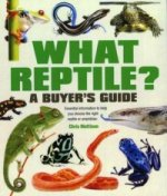What Reptile A Buyers Guide
