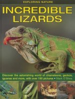 Exploring Nature: Incredible Lizards