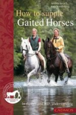 How to Supple Gaited Horses