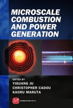 Microscale Combustion and Power Generation