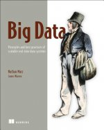 Big Data: Principles and Best Practices of Scalable Realtime