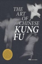 Art of Chinese Kung-Fu