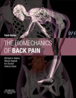 Biomechanics of Back Pain