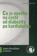 Co je nového na cestě od diabezity po kardiabetes